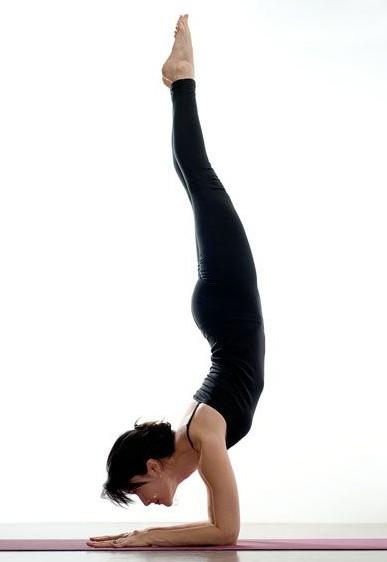 Brandy Arena, Bea Love Yoga